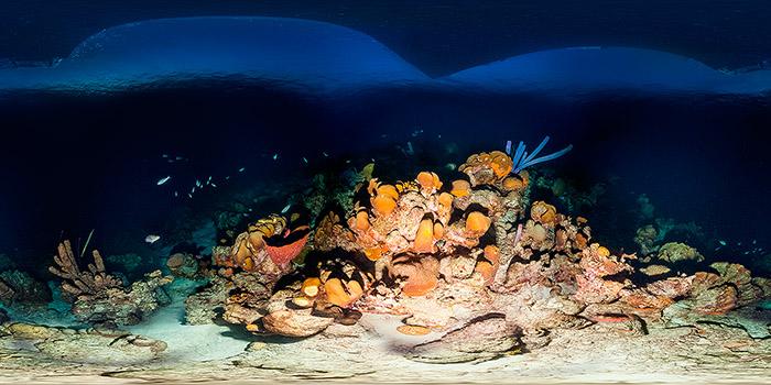 Fotoexplorer-Marcio-Cabral-360-HOL-Bonaire-003