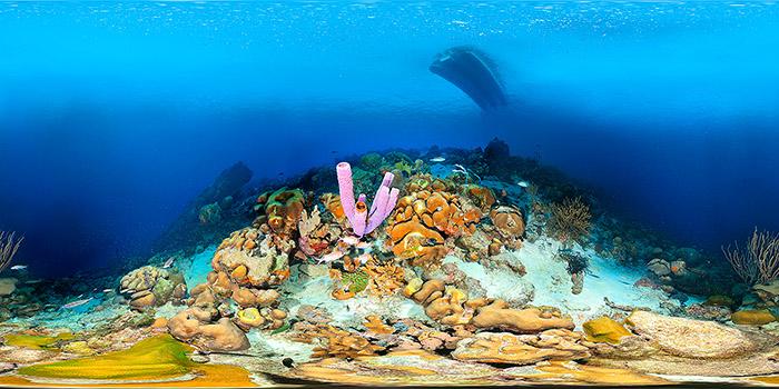 Fotoexplorer-Marcio-Cabral-360-HOL-Bonaire-005